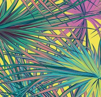 Tropical-Colores